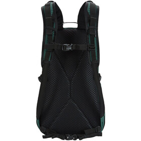 Pacsafe Vibe 25 Backpack forest green